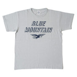 Lot 4064 BLUE MOUNTAIN